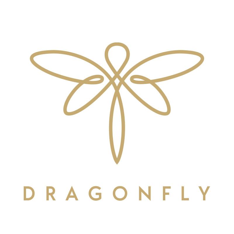 Hightech Startup Logo Design Dragnfly